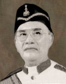 Image result for tun dr awang hassan