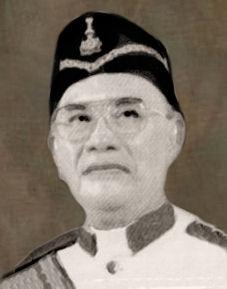 Image result for tun dr awang hassan